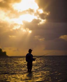 Fly Fishing at Sunset